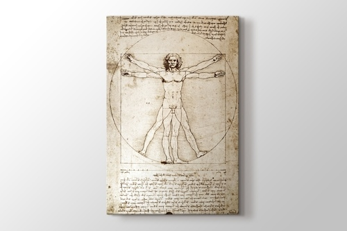 The Vitruvian Man 1498 görseli.