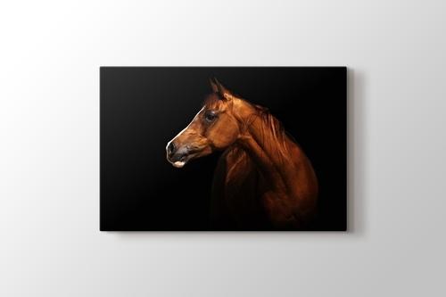 Brown Horse görseli.