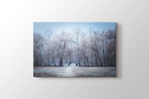 Winter Trees görseli.