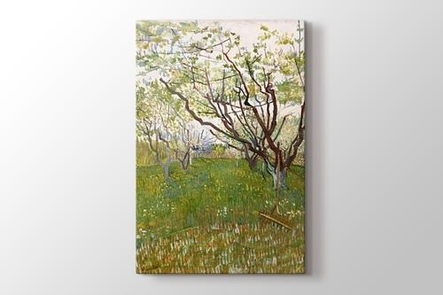 The Flowering Orchard görseli.