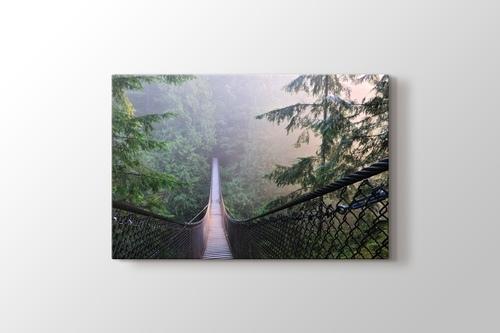 Kanada Lynn Canyon Park görseli.