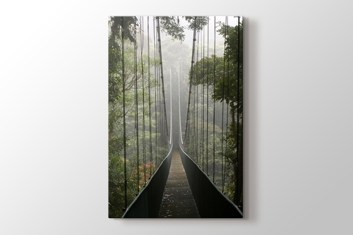 Ormanda Asma Köprü görseli.