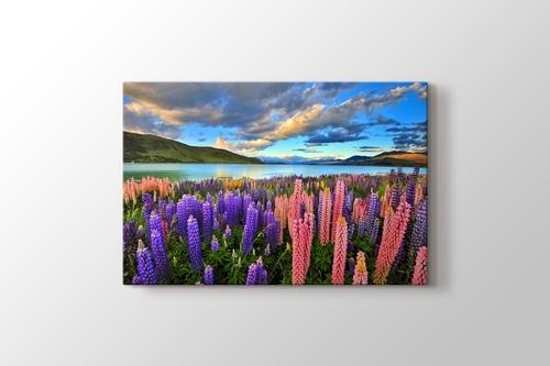 Lake Tekapo - New Zealand görseli.