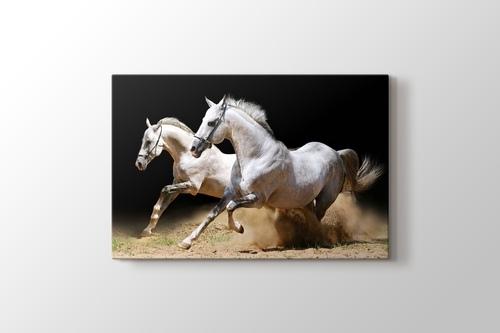 White Horses görseli.