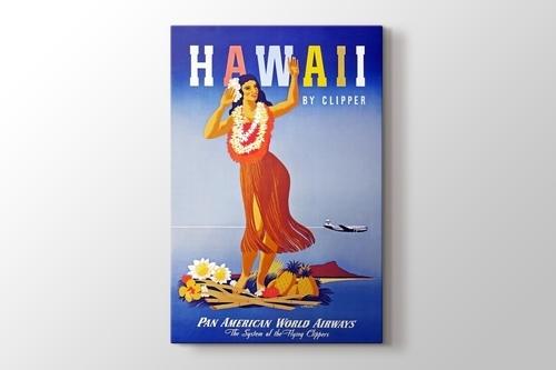 Hawaii Vintage Posteri görseli.