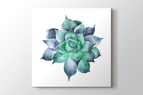 Watercolor Sukkulent görseli.