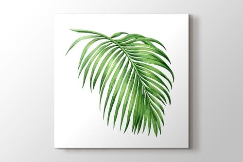 Palm görseli.
