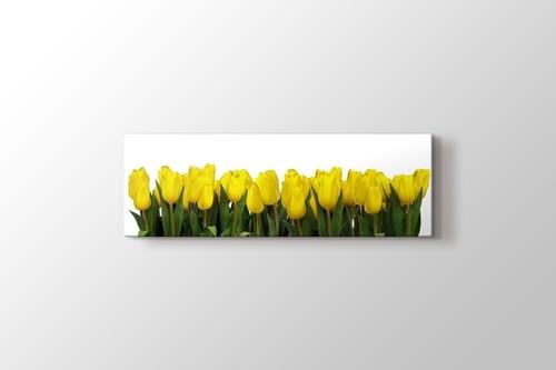 Yellow Tulips görseli.