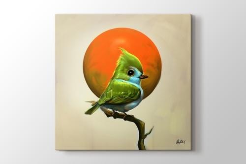 Yeşil Kuş görseli.