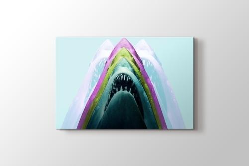 Shark görseli.