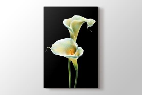 Lillies on Black görseli.