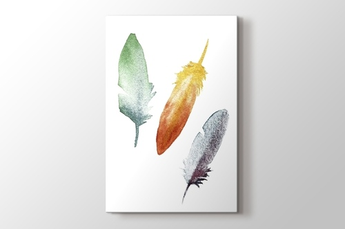 Coloured Feathers görseli.
