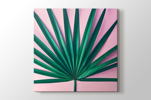 Palm Pink görseli.