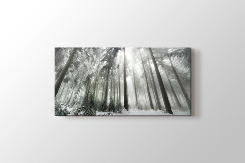 Winter Forest görseli.