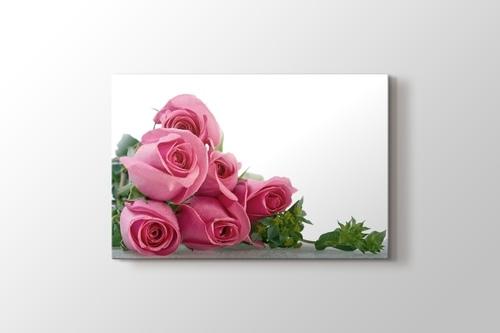 Pink Roses görseli.