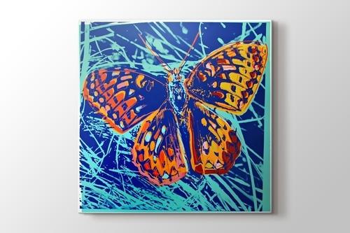 Silverspot Butterfly görseli.