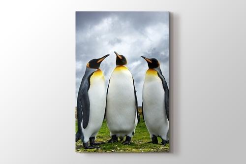 Penguin Family görseli.