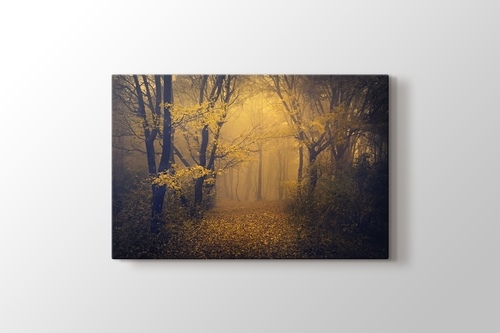 Sonbaharda sisli orman patikası görseli.
