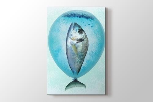 Balloonfish görseli.