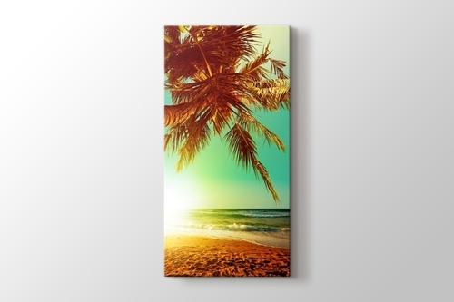 Palmiye Adası görseli.