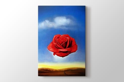 Meditative Rose görseli.