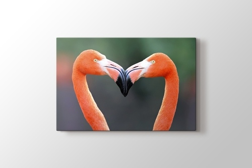 Flamingo Heart görseli.