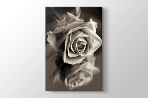 Sephia Flower Close-Up görseli.