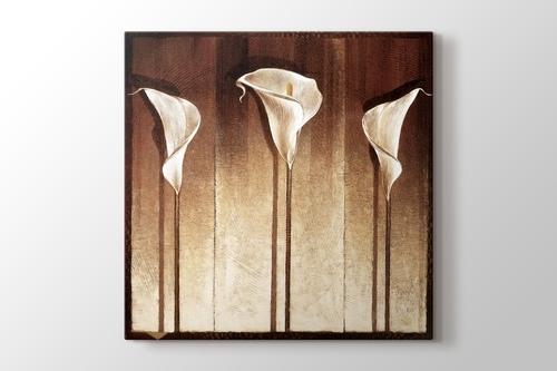 Three Cella Lillies görseli.