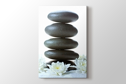 Beyaz Çiçek ve Çakıl Taşları görseli.