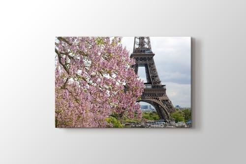 Eiffel Behind a Tree görseli.