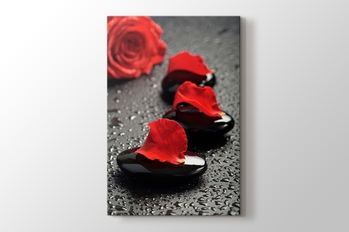 Black Pebbles and Red Rose görseli.