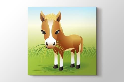 Donkey görseli.