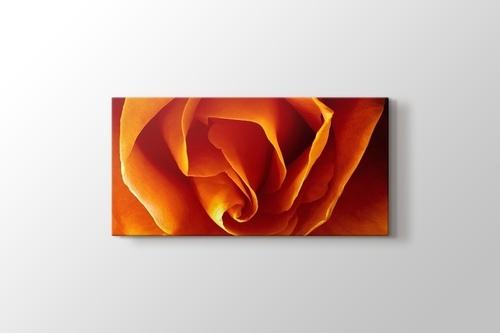 CloseUp Orange Rose görseli.