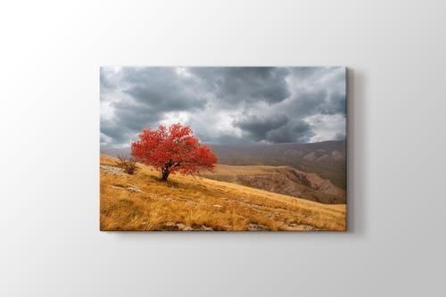 Red Tree görseli.