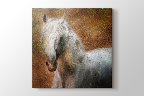 Beyaz At görseli.