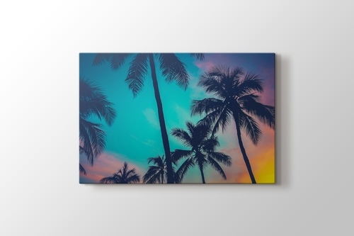 Palm Sky görseli.