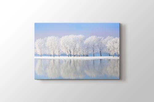 Bembeyaz Kış Ağaçları görseli.