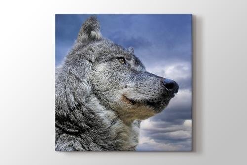 Wild Wolf görseli.