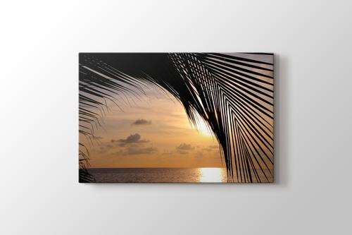 Sunset and a Palm Tree görseli.