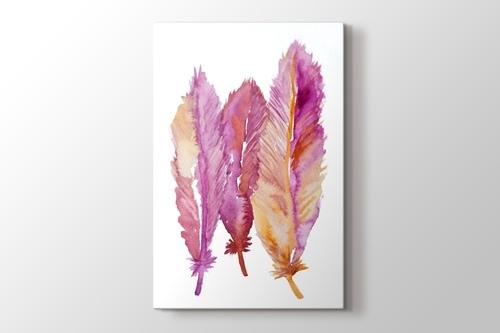 Feathers görseli.
