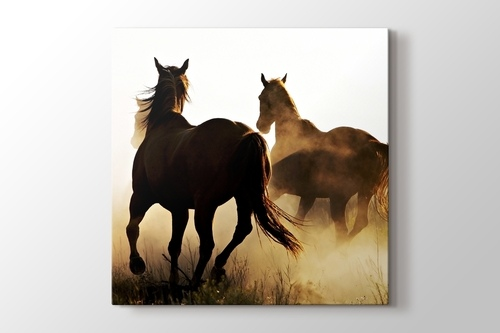 Cowboy and the Horses görseli.
