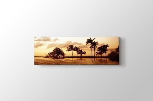 Palms and Ocean görseli.